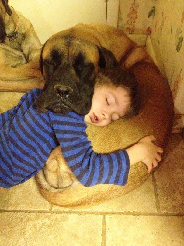 11-dog-owner-dopplegangers
