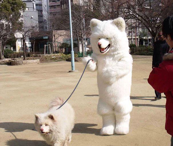 12-dog-owner-dopplegangers
