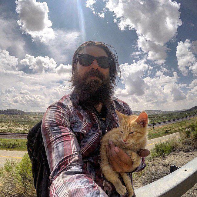 biker kitten 2