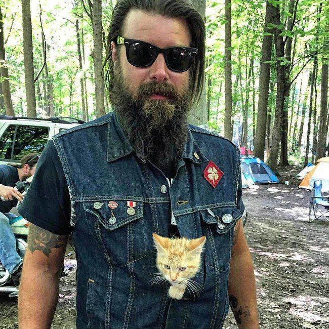 biker kitten 3