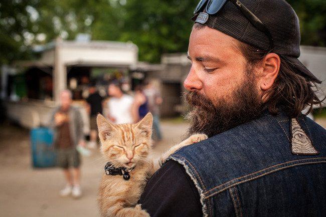biker kitten 5