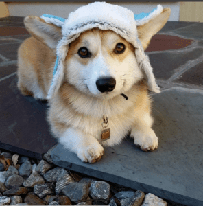 cold outside hat