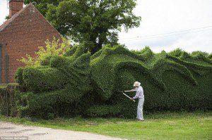 02-dragon-hedge