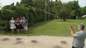 04-dragon-hedge