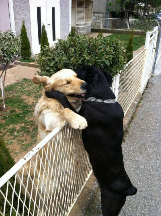 International-Hug-Day-10
