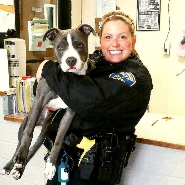 3.28.16-Officer-Adopts-Abandoned-Dog1-590x590