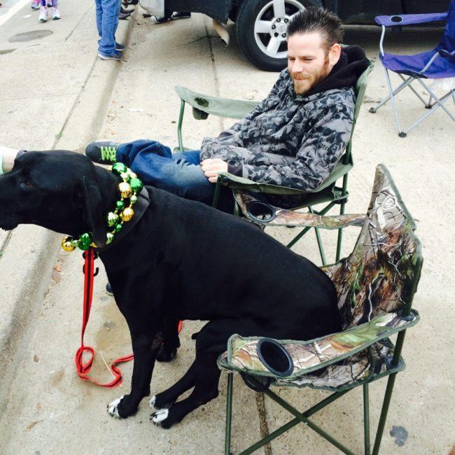 animals on St. Patrick's day2
