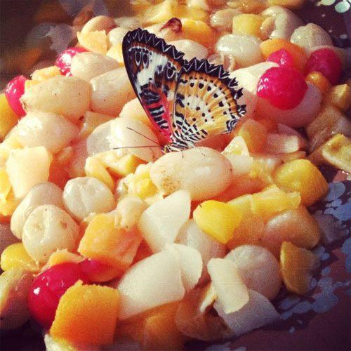 butterfly-fruit