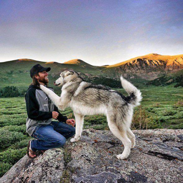 4.10.16-Loki-the-Wolfdogs-Adventures7-590x590
