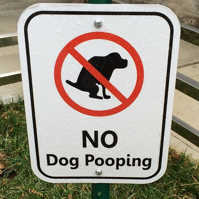 No-Dog-Pooping