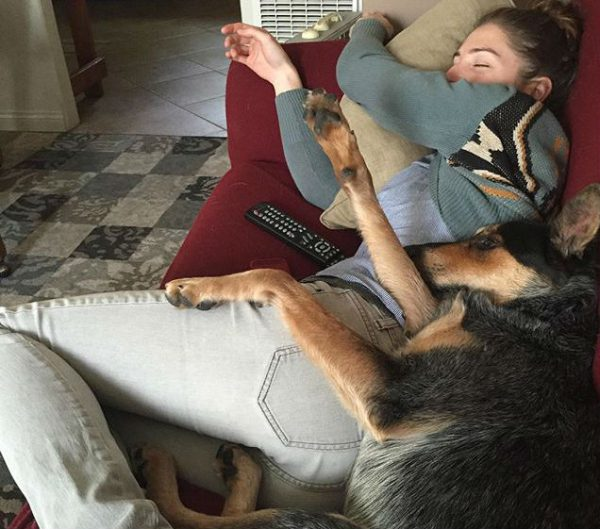 dog-cuddle-1-600x529