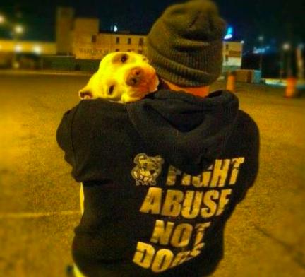 mistreated shelter dog