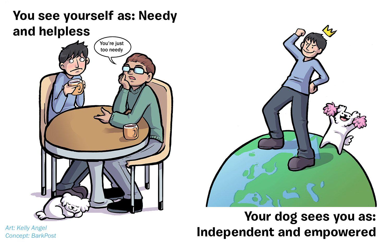 needy-copy-5