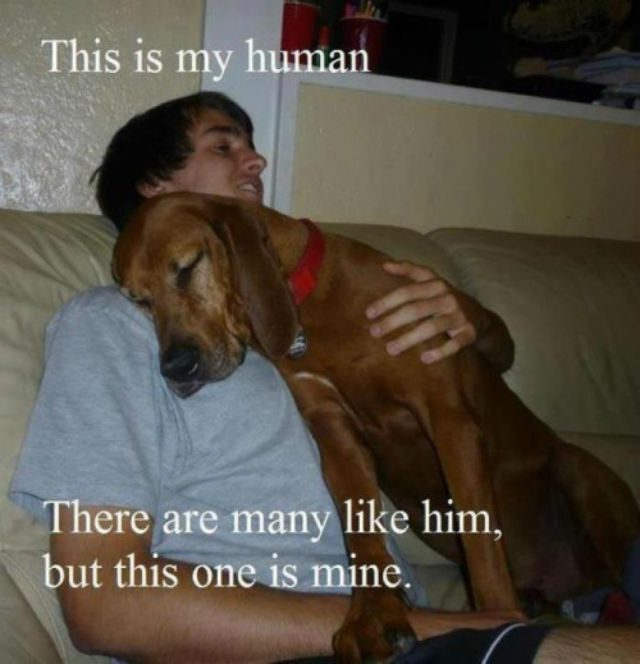 this-is-my-human