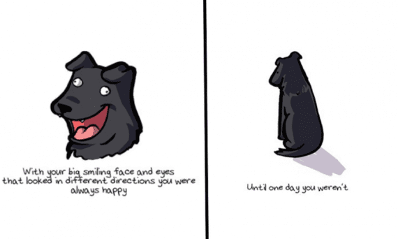 dogs-life1-570x342