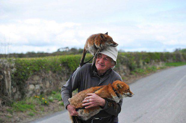 foxy-family-1