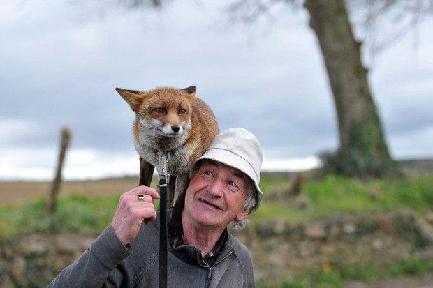 foxy-family-3