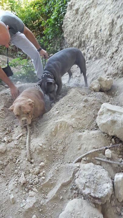 buriedalive3