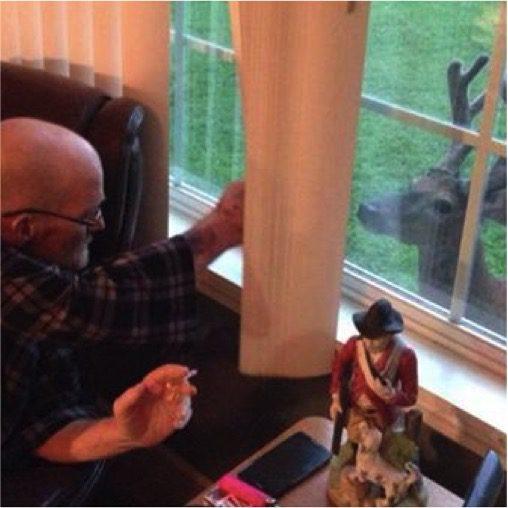 deer-visits-dying-man-1