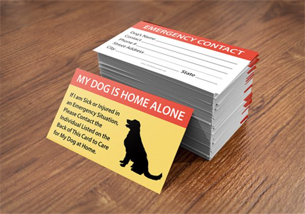pet-care-card-1