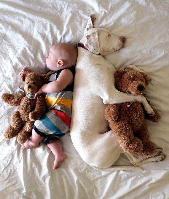 baby-and-dog-friendship-4