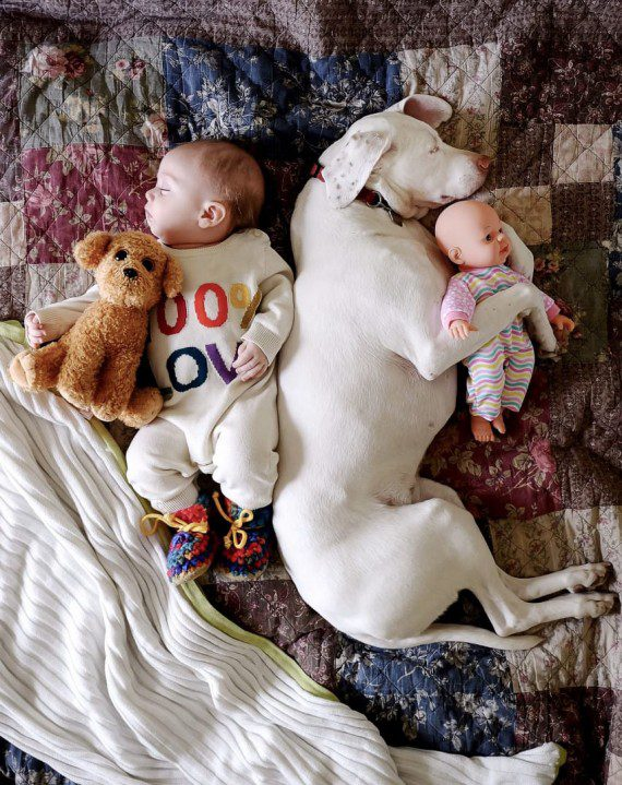 baby-and-dog-friendship-6