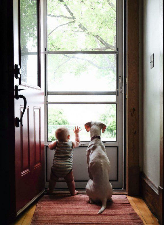 baby-and-dog-friendship-9