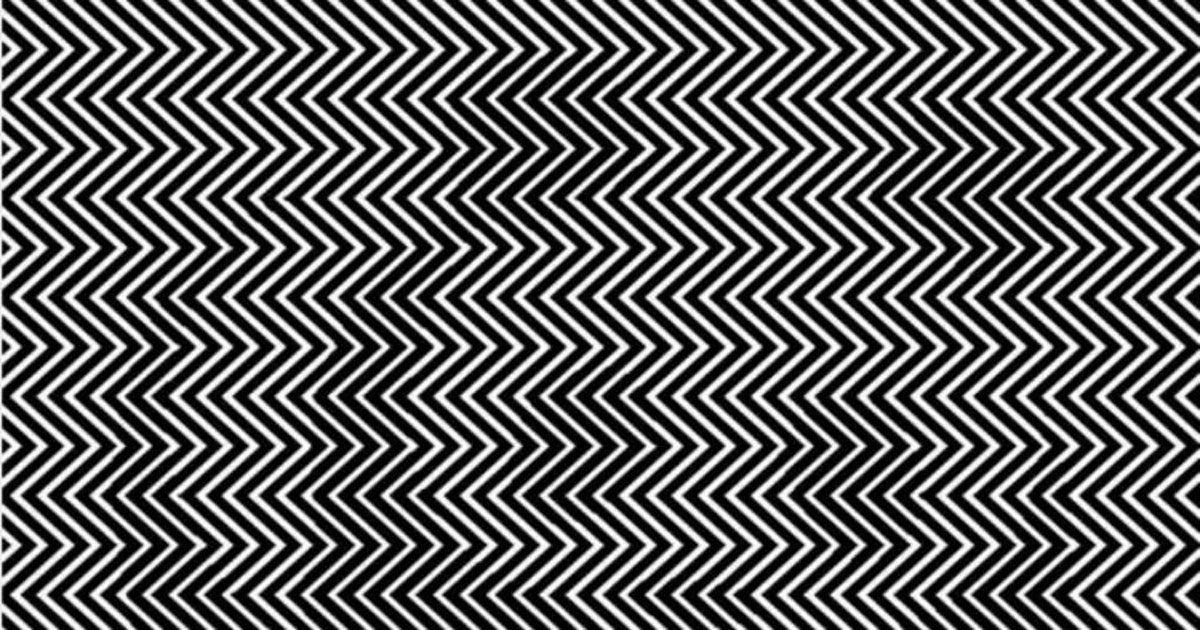 panda_optical_illusion_featured