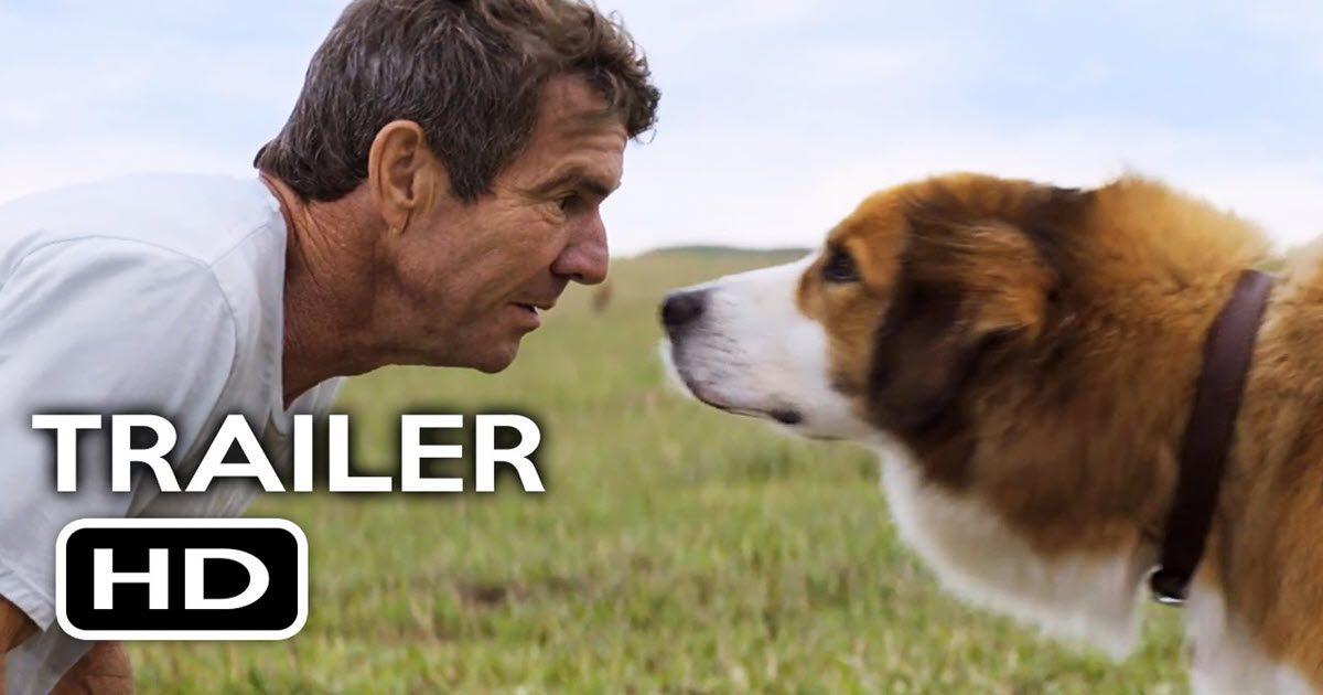 movie a dog's purpose