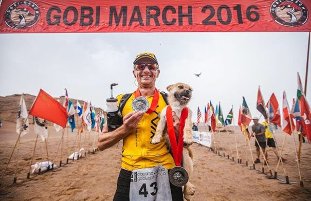 stray-dog-joins-race-gobi-dion-leonard-china-9