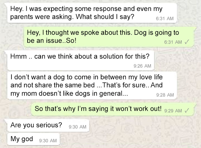 rejected-arranged-marriage-proposal-dog-16