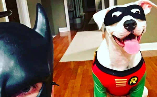 batdad-and-adopted-pit-bull-600x371