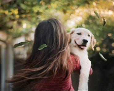 overprotective dog parent