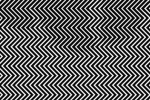 panda illusion