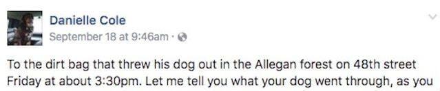 abandoned dog facebook