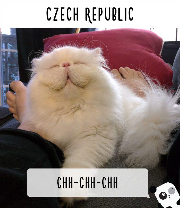 cat calling in different languages 23