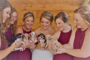 rescue puppy wedding bouquet