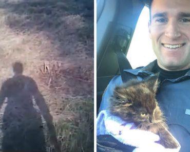 cop saves kitten