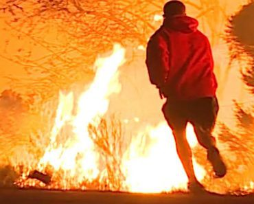 man saves rabbit from california wildfire