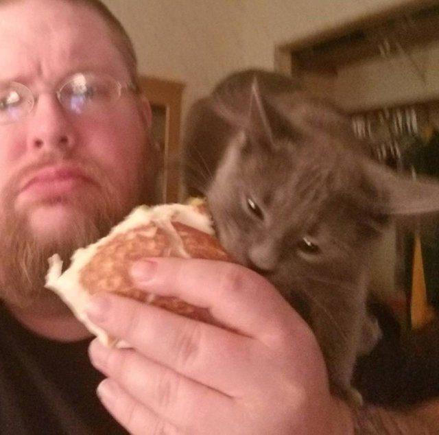 rescue kitten loves food