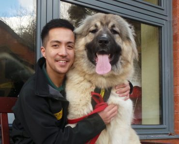shelter biggest puppy