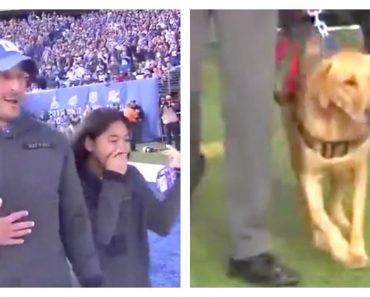Steve DeVries service dog