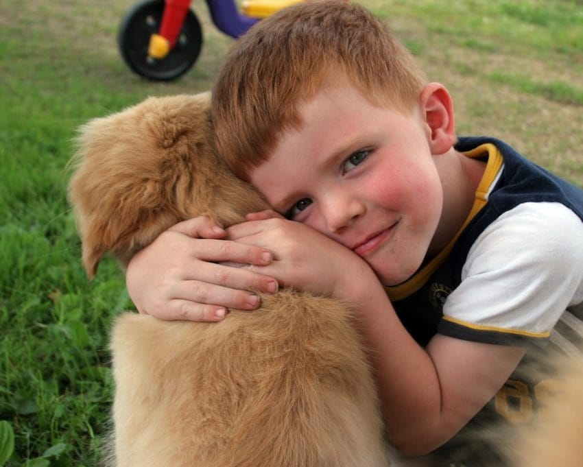 humans love dogs study