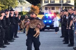 officer says goodbye to k9 partner
