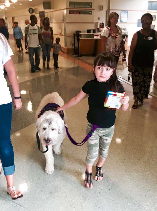 service dogs girl with epilepsy