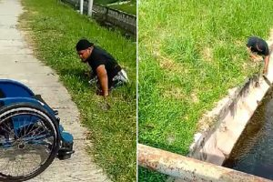 disabled man rescues kitten